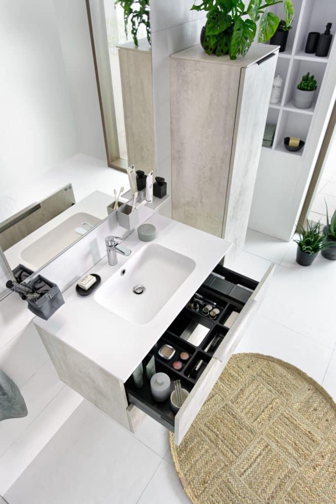 Schmidt vannitoad